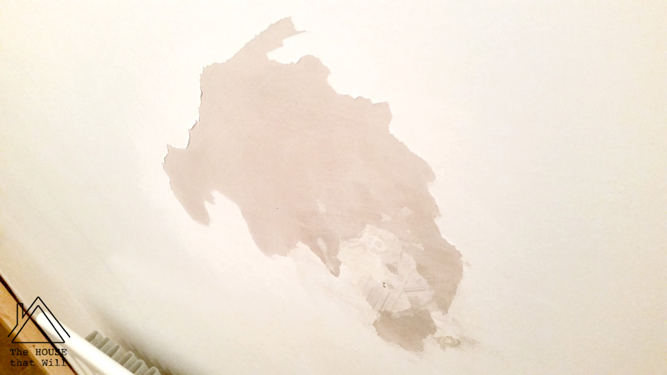 The House that Will | Common Problems with Paint - and how to avoid them